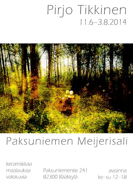 Näyttelyjuliste Rääkkylän Meijerisali 2014