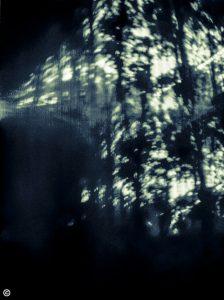 Lehdon hämärässä asuu satu, solarigrafia, 2013
