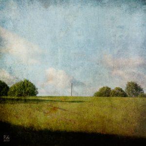 Kesäpelto, 30x30cm, mustesuihkuvedos + mehiläisvaha, 2015