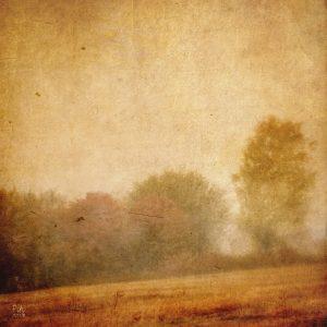 Syksyllä 1, 30x30 cm, mustesuihkuvedos + mehiläisvaha, 2018